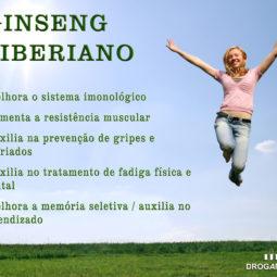 ginseng_siberiano